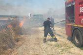 Edirne yol kenarındaki yangın… Araç sürücüleri korktu!