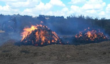 Lalapaşa'da saman balyaları yanan üreticiler için kampanya…