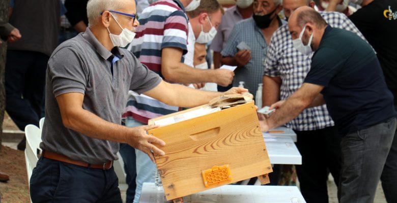 Arı Yetiştiricileri Birliği seçimlerinde oyları arı kovanına attılar