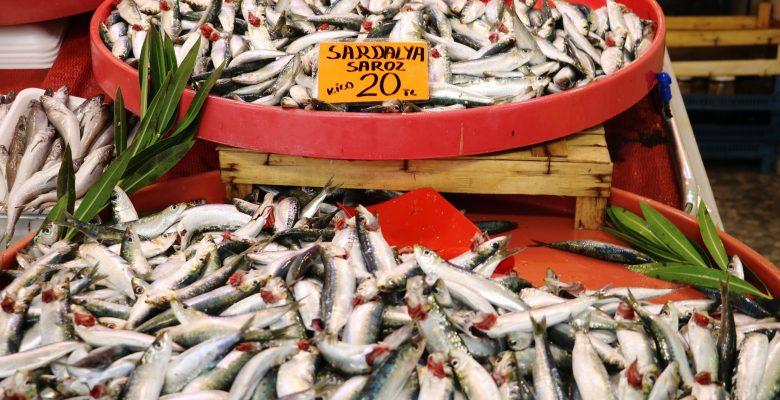 Av yasağı bitti Çanakkale'de tezgahlar balıkla doldu