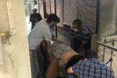 Bursa'da halı yıkama makinesine sıkışan tilki kurtarıldı