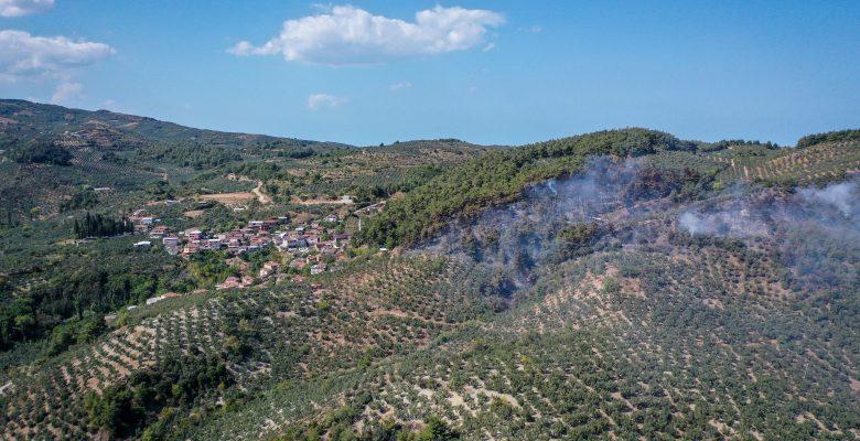 Mudanya'da ormanlık alanda çıkan yangın kontrol altına alındı