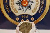 Bursa'daki uyuşturucu operasyonunda 1 kişi tutuklandı