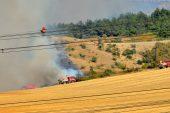 Gelibolu'daki orman yangını kontrol altına alınamıyor!