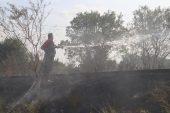 Kırklareli'nde otluk yangını
