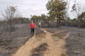 Kocaeli'de çıkan orman yangınına müdahale ediliyor