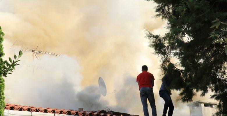 Tek katlı binanın çatısında çıkan yangın hasara yol açtı