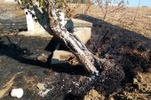 Malkara'da anız yangını!