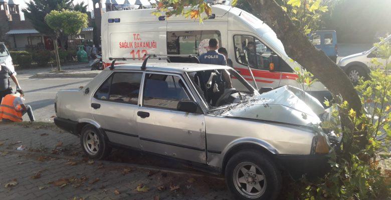 Orhangazi'de ağaca çarpan otomobildeki 2 kişi yaralandı