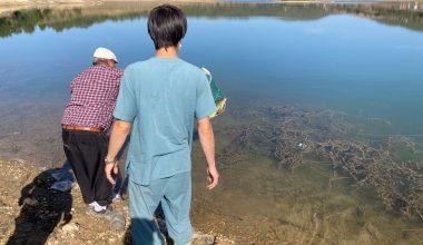 Su ürünleri ve balıkçılık denetlemesi