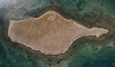 """Taşlı Ada'nın """"kesin korunacak hassas alan"""" ilan edilmesi"""