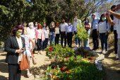 Tuncel Kurtiz vefatının 7'nci yılında mezarı başında anıldı