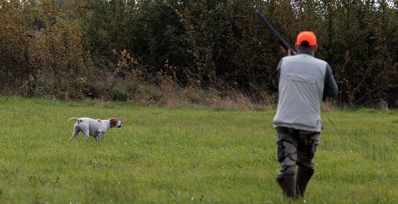 Edirne'de belgesiz avlanan avcılara ceza!