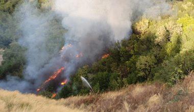 Orman yangını kontrol altına alındı!