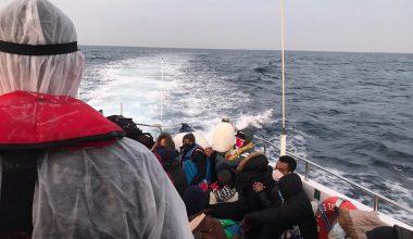 Türk kara sularına itilen 34 yabancı uyruklu kurtarıldı