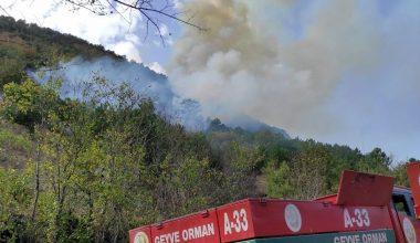Orman yangını! Kontrol altına alındı…