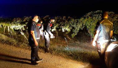 Jandarma ve zabıtadan meyve sebze hırsızlığına karşı ortak devriye