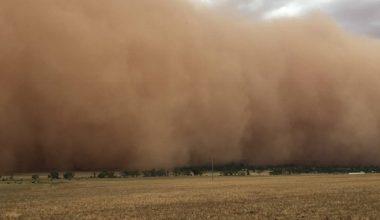 Edirne'de kum fırtınası haberine, en yetkili ağızdan yalanlama!