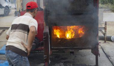 Türkiye'nin çeltik ambarı Edirne'de kurutma mesaisi başladı