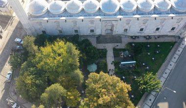 Edirne'de yıllara meydan okuyan anıt ağaçlar koruma altına alındı