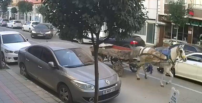 Trafikteki sürücüsüz at arabası ilginç görüntü oluşturdu