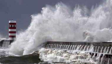 Tsunamide suyun 2,30 metre yükselmesinin izleri belirlendi