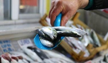 Yılbaşı ve sokağa çıkma kısıtlaması öncesi balık satışlarında artış