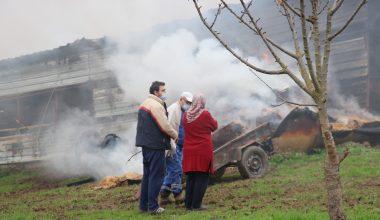 Yalova'da ahır yangını