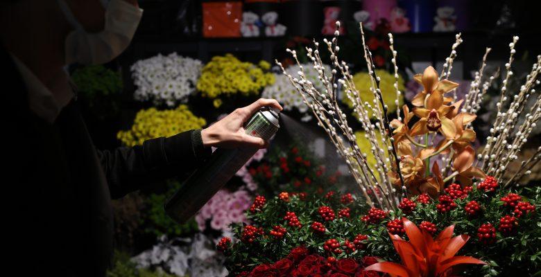 Yılbaşının simgelerinden kokina çiçeği tezgahları süslüyor