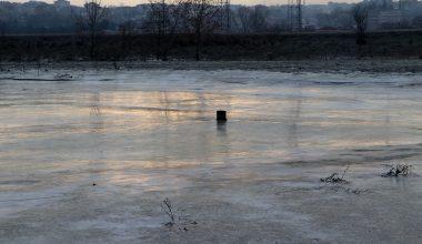Tunca Nehri kenarındaki tarlalar soğuk nedeniyle buz tuttu