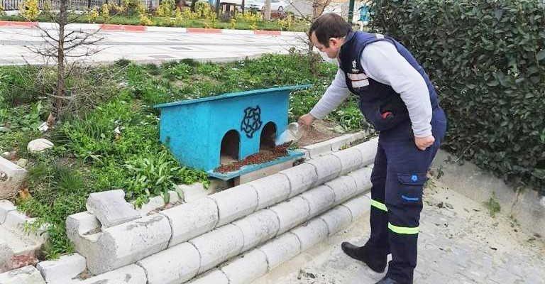 Sokak hayvanlarını beslediler…