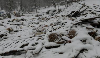 Yoğun kardan çöken ahırdaki küçükbaş hayvanlar telef oldu