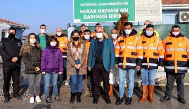 """Edirne'de barınakta yaşayan """"Paspas"""" adlı köpeği Gülben Ergen sahiplendi"""