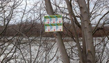 Meriç Nehri kenarına 6 dilde bilgilendirme tabelası