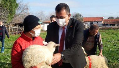 Sosyal medyada ünlenen küçük çoban Şevki'ye ödül