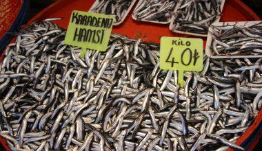 Geçen ay en çok hamsi, çinekop ve istavrit satıldı