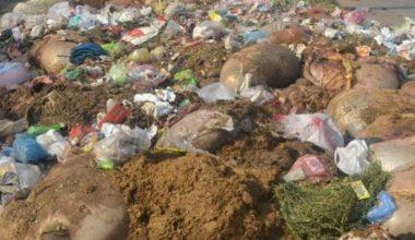 Hayvansal atıkların gölete bırakılmasına inceleme!