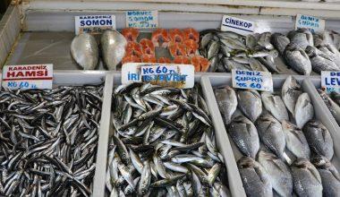 Deniz salyası hamsi ve istavritin fiyatını artırdı