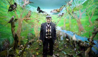 61 yılda bine yakın hayvanı doldurdu