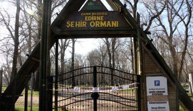 Park ve ormanlara kısıtlama!