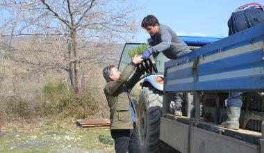 Ganos Dağı etekleri köylülerin diktiği fıstık çamı fidanlarıyla güzelleşecek