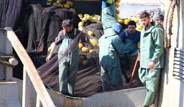 Marmara'daki deniz salyası yüzünden balıkçılar dümeni Karadeniz'e kıracak