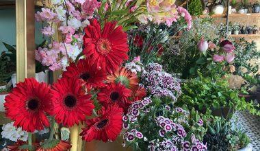 Kısıtlamadan muaf tutulan çiçekçiler hazırlıklara başladı