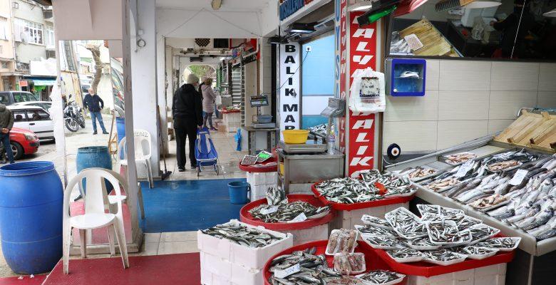 Av sezonu Güney Marmara'da balıkçıları üzdü, Kuzey Ege'de yüzleri güldürdü