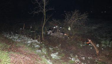 Ağaca çarpan pikabın sürücüsü öldü