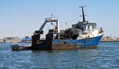 Saros Körfezi'nde yasa dışı avlanan 6 kişiye ceza!