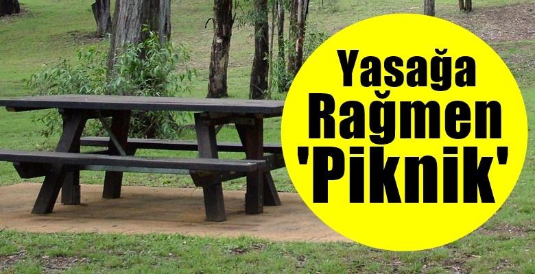 Piknik yapan 25 kişiye 86 bin lira ceza!