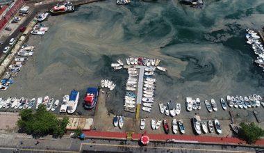 Tekirdağ kıyılarında müsilaj yoğunluğu