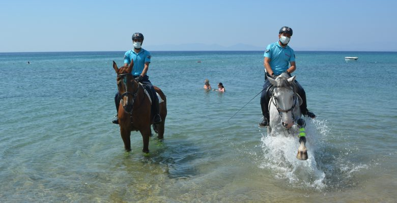 Ayvalık plajlarının güvenliği jandarmanın atlı birliklerine emanet