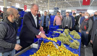 Memleket Partisi Genel Başkanı İnce, Balıkesir'de ilçe teşkilat binalarını açtı: